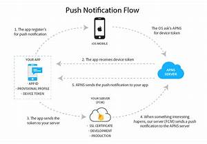 Send Push Notification To Android And Ios App  Part 3