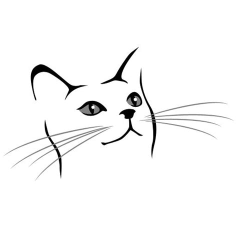 simple drawing   cat face        real