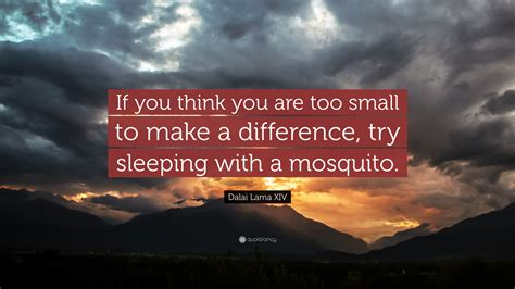 """Dalai Lama Xiv Quote """"if You Think You Are Too Small To Make A Difference, Try Sleeping With A"""