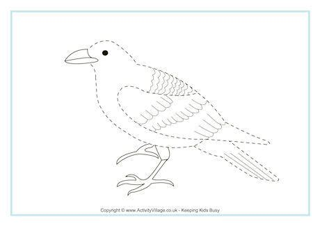 raven tracing page
