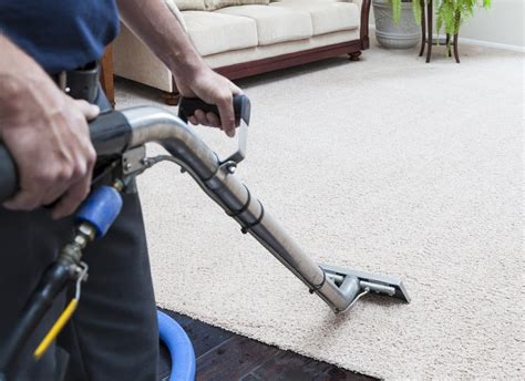 Carpet Cleaners Carpet Cleansing Essentials Carpet Cleaning Shooing Service Nyc