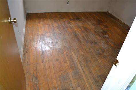 Fixing Hardwood Floors Water Damage by Diy Improvements Koos