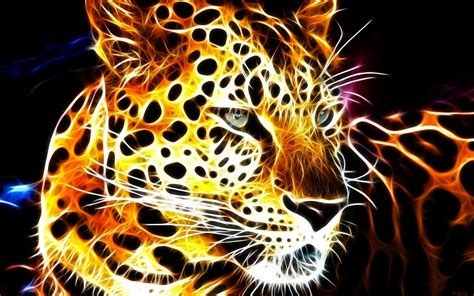 cool animal wallpapers    images