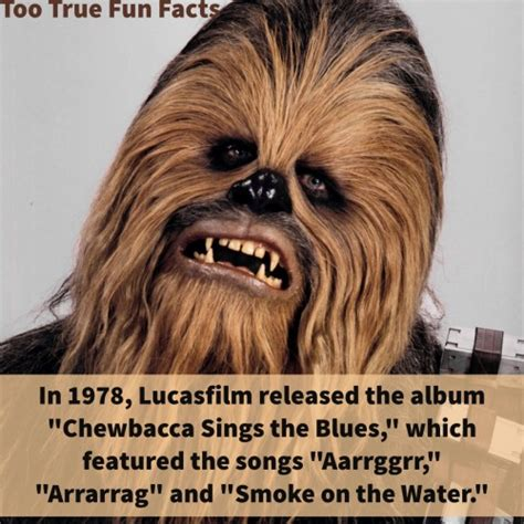 Chewbacca Memes - chewbacca memes tumblr