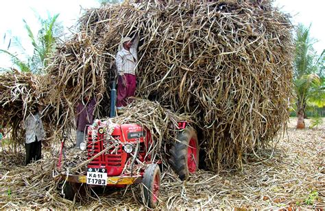 cuisine indien tech can convert farm waste to fuel more efficiently