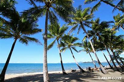 Tropical Beaches Paradise Cairns