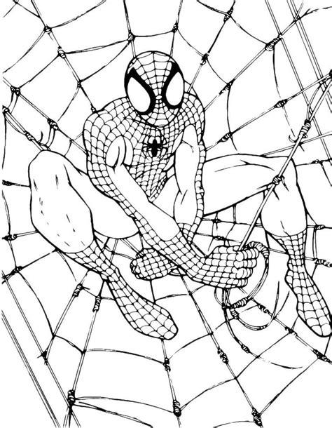 Film Kartun Spiderman Hulustream