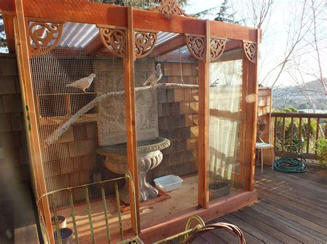 modern tv designs for living room how to create an aviary for rescued pigeons or doves