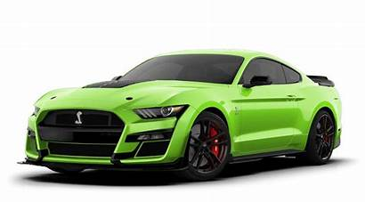 Mustang Colors Magnetic Shelby Ford
