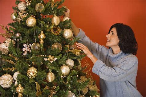 heres     christmas tree alive  season