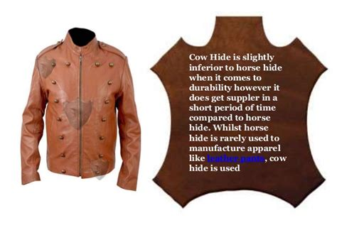 Types Of Animal Hides Used For Making Leather Wear