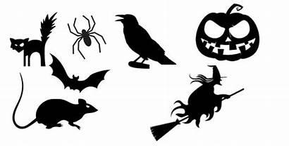 Silhouettes Silhouette Halloween Souris Noir Une Chauve