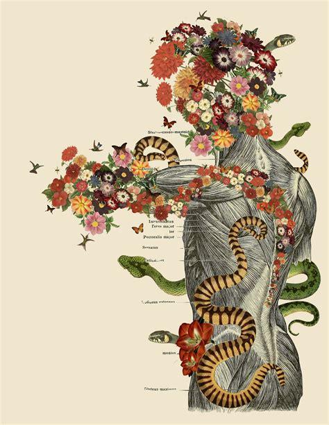 travis bedels anatomical collages   vintage