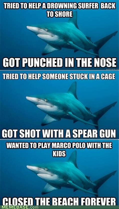Shark Attack Meme - funny shark attacks
