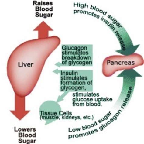 high blood sugar  shaking zoloft