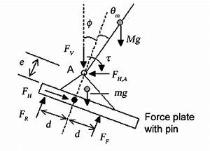 Free Body Diagram Of Feet With Force Plate  D   Distance