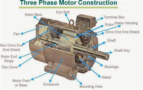 Function Of Electric Motor by Electrical And Electronics Engineering Three Phase Motor