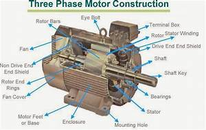 Electrical And Electronics Engineering  Three Phase Motor Construction