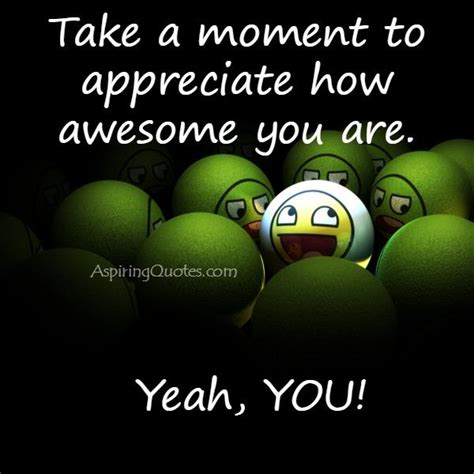 Take A Moment To Appreciate How Awesome You Are Aspiring