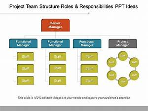 Project Team Structure Roles And Responsibilities Ppt