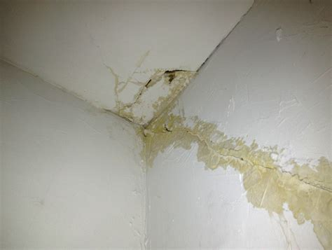 water leaking out of ceiling fan photo ceiling damage water leak images leaky roof water