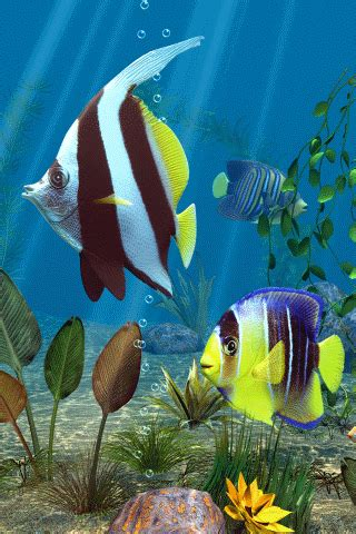 Animated Fish Aquarium Wallpaper Mobile - fish mobile screensavers for your cell phone