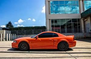 SVT Cobra   New edge mustang, Mustang cobra, Mustang gt