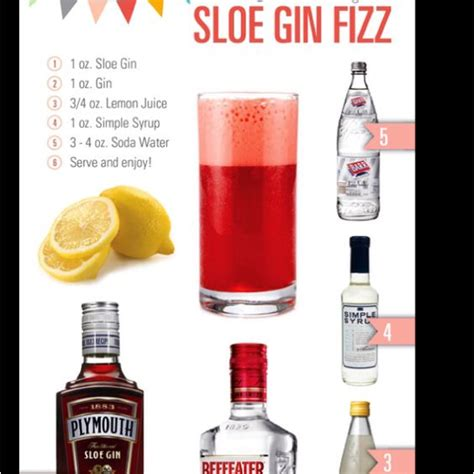 sloe gin fizz sloe gin fizz good eats etc pinterest gin drinks and chang e 3