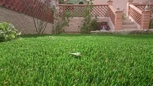 Gazon Synthétique Pas Cher : le gazon synthetique le moins cher gazon et pelouse ~ Dailycaller-alerts.com Idées de Décoration