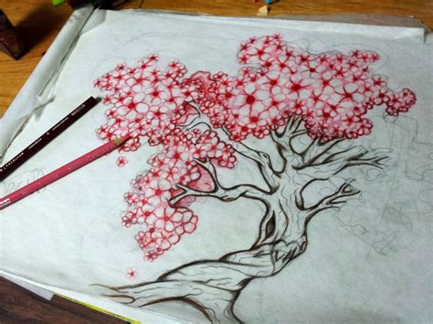 This The One Cherry Tree With Big Fat Blossoms