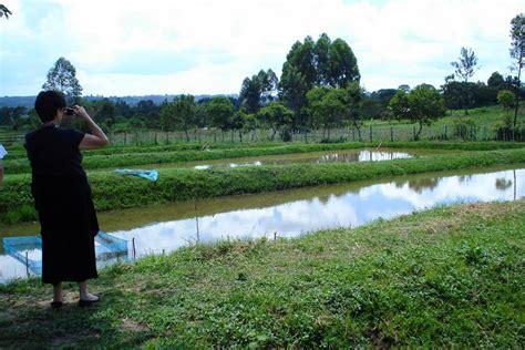 jon  marianne hunter  kenya tilapia fish farm ponds