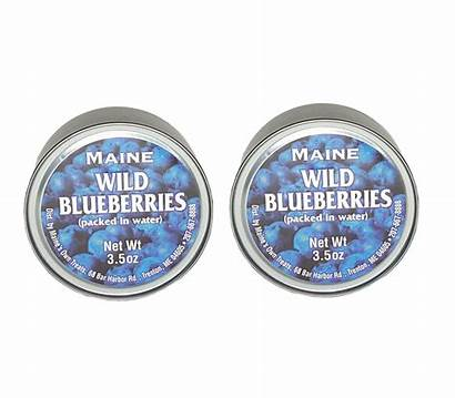 Maine Ounce Wild Blueberries Pancakes Baking Packed