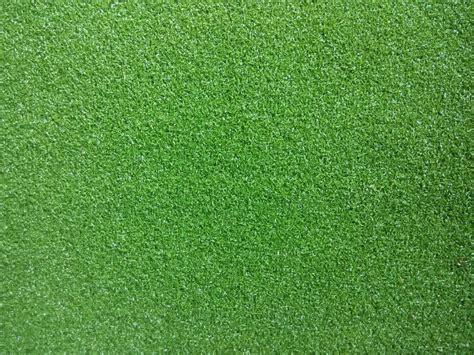 jual rumput taman harga murah tukang taman murah
