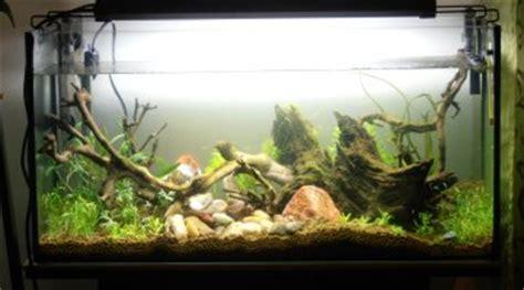 kh aquarium eau douce kh trop bas aquarium eau de mer