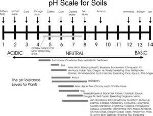 Soil pH Scale Chart