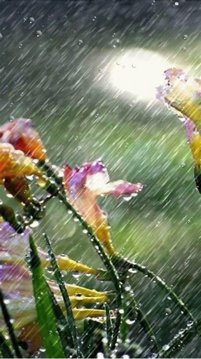 Rain Season Rainy Tbn0 Cau Usqp Gstatic