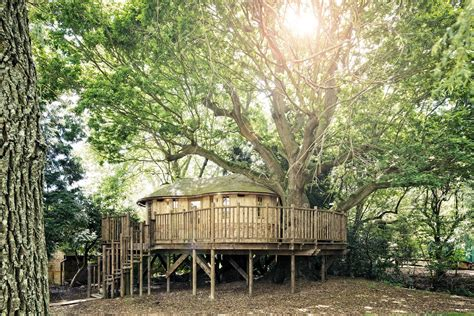 whimsical tree house design adults actual home
