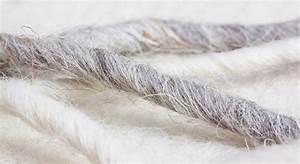 Mittel Gegen Schnecken : schafwolle gegen schnecken haare schurwolle schafwollpellets wirkt das ~ One.caynefoto.club Haus und Dekorationen