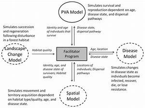 A Pva Program Acts As The System Model  Solid Outline  To