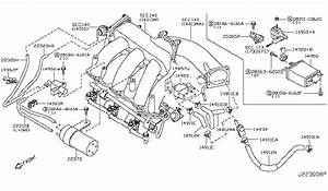 2002 Nissan Maxima Engine Diagram