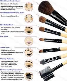 what to put on wedding programs the of makeup the must makeup brushes 2