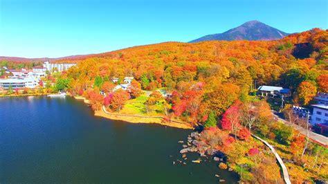 drone japan  autumn lake