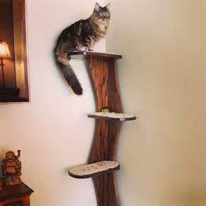 Best Carpet For Cat Scratching Post by Cat Tower Corner Climbing Cat Tree 68 Real Oak By