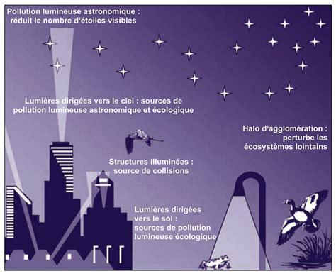 quel est l impact 233 cologique de la pollution lumineuse encyclop 233 die de l environnement