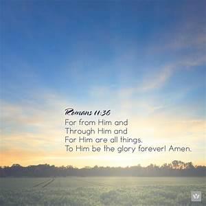 Daily Bible Ver... Bible Verses