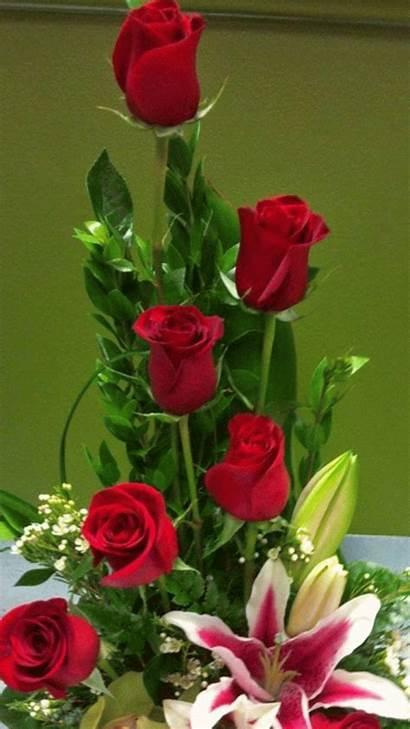 Hermosas Flores Imagenes Sitemy Amoramor Cartas Buenas