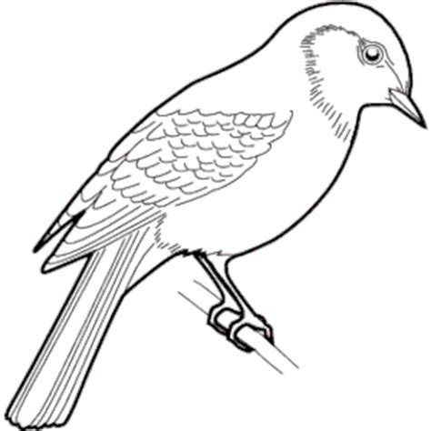 sparrow clipart black and white pin house sparrow clipart clipart panda free clipart