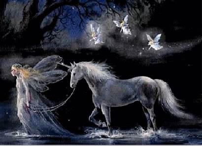 Fairy Animated Angels Fairies Horse Wallpapers Desktop