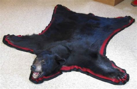 Skin Rug Taxidermy Cost by Black Rug I Will Get One One Day Likes