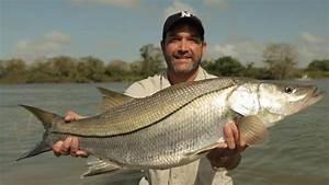 Informazioni sul programma Monster Fish: pesci giganti Show National Geographic Channel Italia
